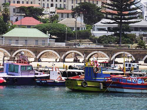 Tours in Cape Town